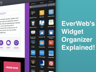 EverWeb's Widget Organizer Explained